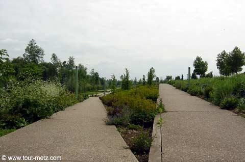 Parc de la Seille à Metz cote riviere 4