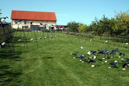 F te des jardins et des saveurs laquenexy tout metz - Jardins fruitiers de laquenexy ...