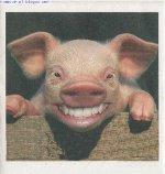 Fête du cochon 2012 à Bazoncourt, 49ème édition