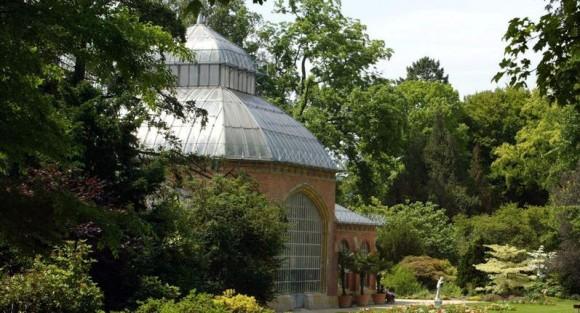 Le jardin botanique de metz rejoint les jardins sans limites tout metz for Jardin fabert metz
