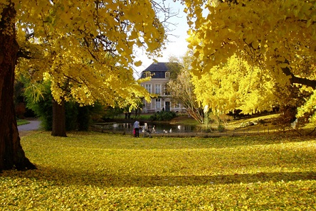Histoire jardin botanique de metz for Jardin fabert metz