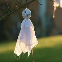Frissonnez au Parc animalier de Sainte Croix pour Halloween