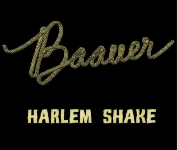Harlem shake géant à Metz le 16 mars