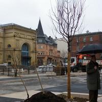 La Place du Roi George à Metz revit