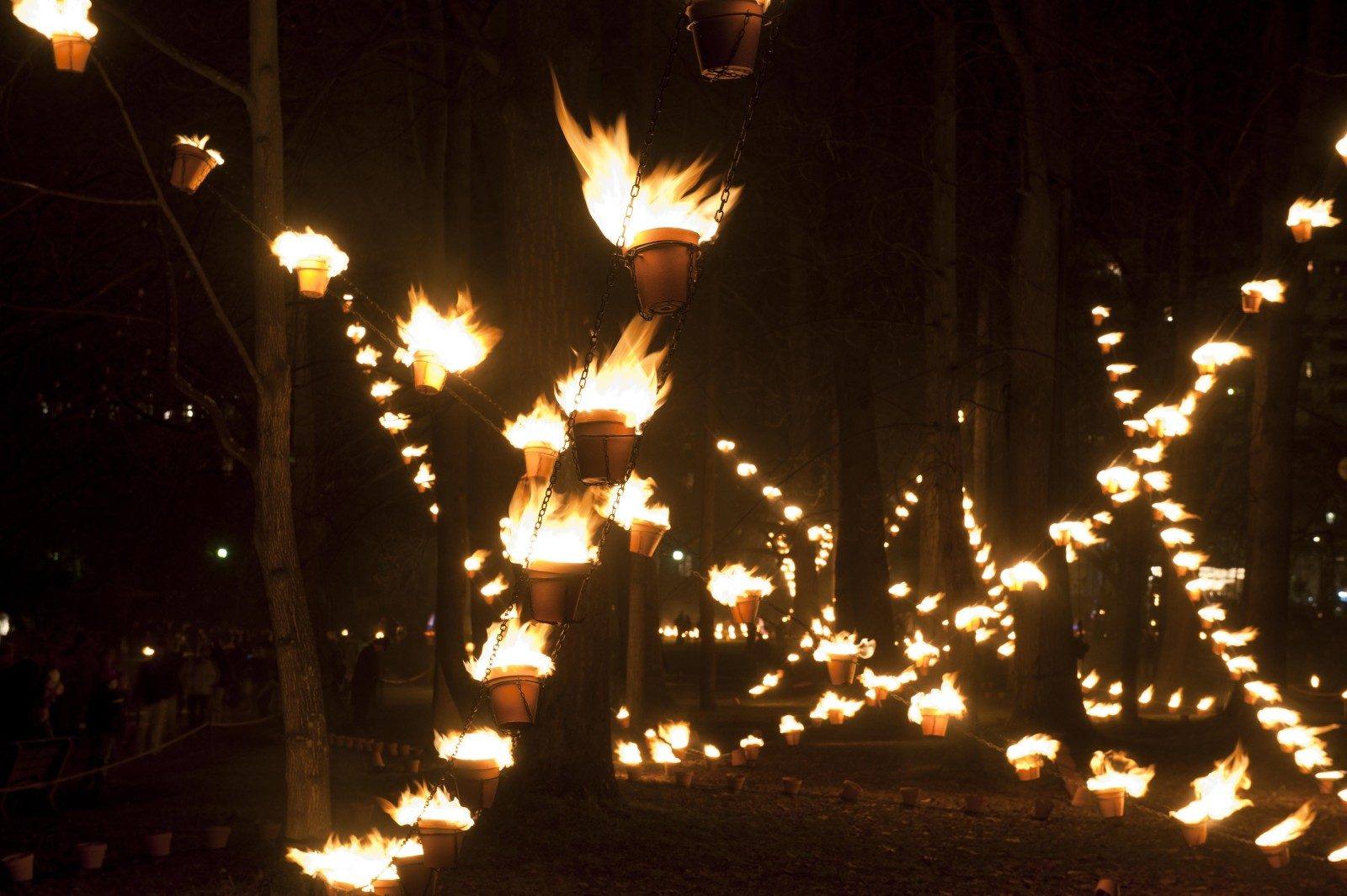 Metz a choisi le spectacle Les Feux de Noël pour inaugurer ses marchés