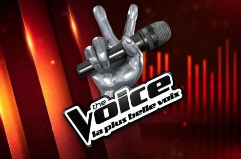 The Voice Tour 2014 : Maximilien et les plus belles voix à Amnéville