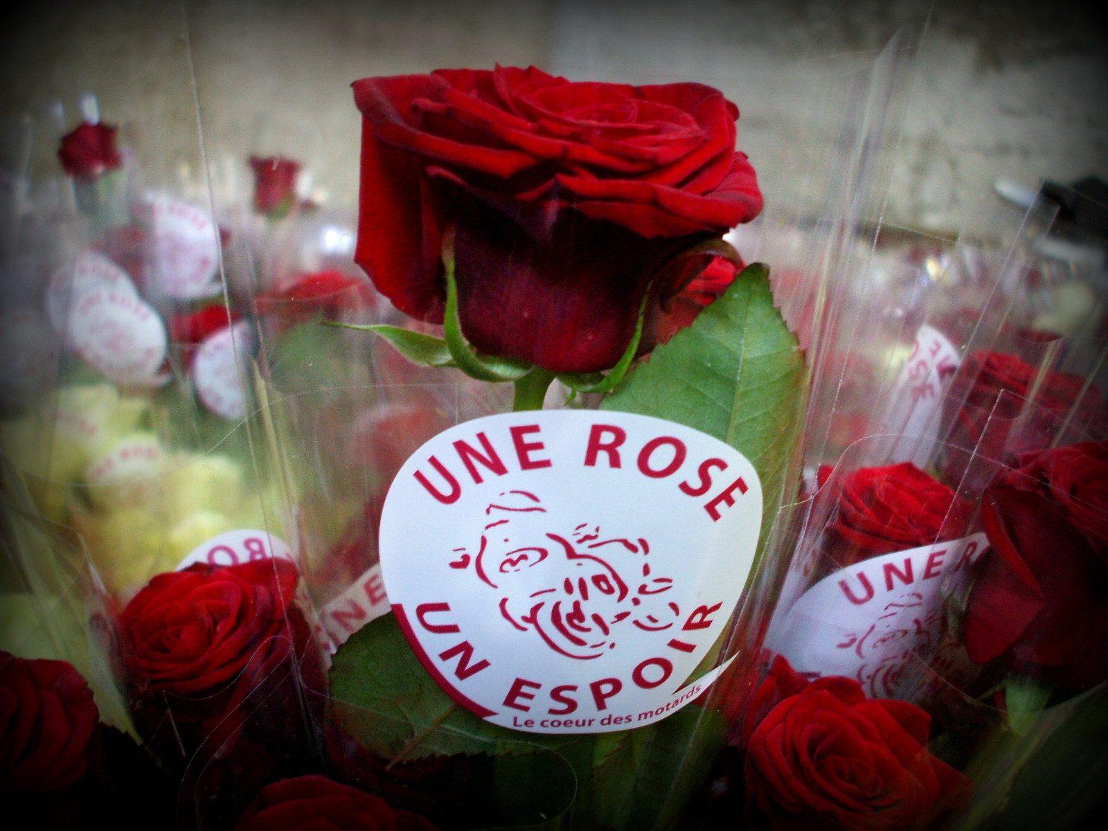 Une Rose, Un Espoir : en Lorraine, les motards se préparent