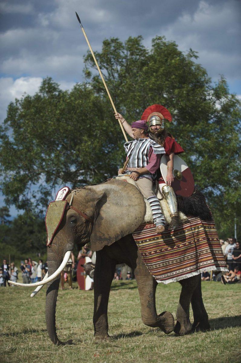 Vita Romana 2014 : Bliesbrück vous fait voyager dans la Rome Antique
