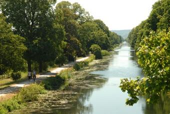 Montigny-les-Metz : le canal de Jouy se refait une beauté et a besoin de vous