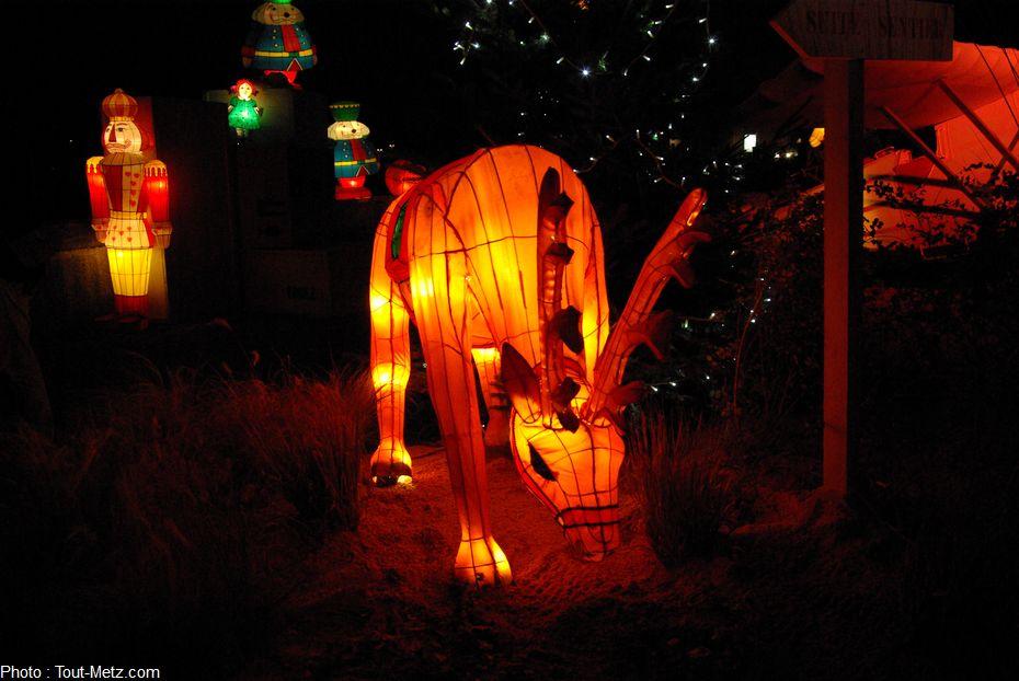 Photo of Visite au sentier des lanternes (photo reportage)