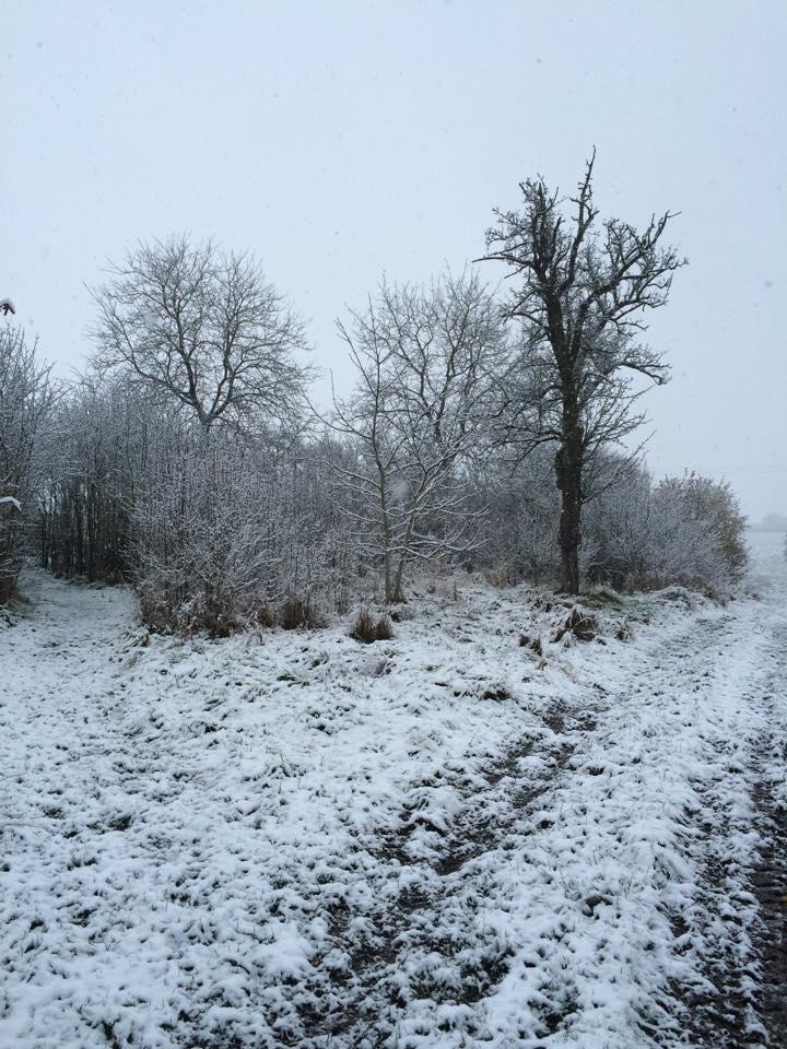 Météo : de la neige prévue ce soir en Lorraine