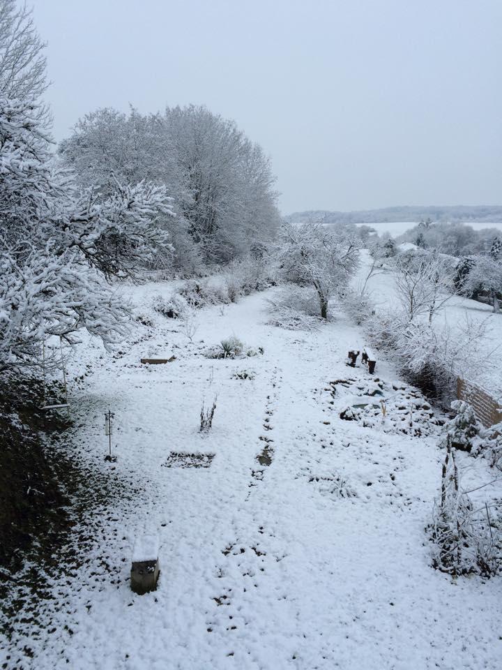 Météo en Lorraine : Noël sous la pluie, mais de la neige ce week-end