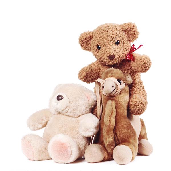 Moselle : plus de 10 000 jouets récoltés pour les enfants défavorisés