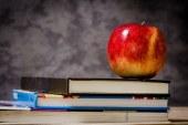 Un nouveau calendrier scolaire 2016-2017 pour les 13 nouvelles régions