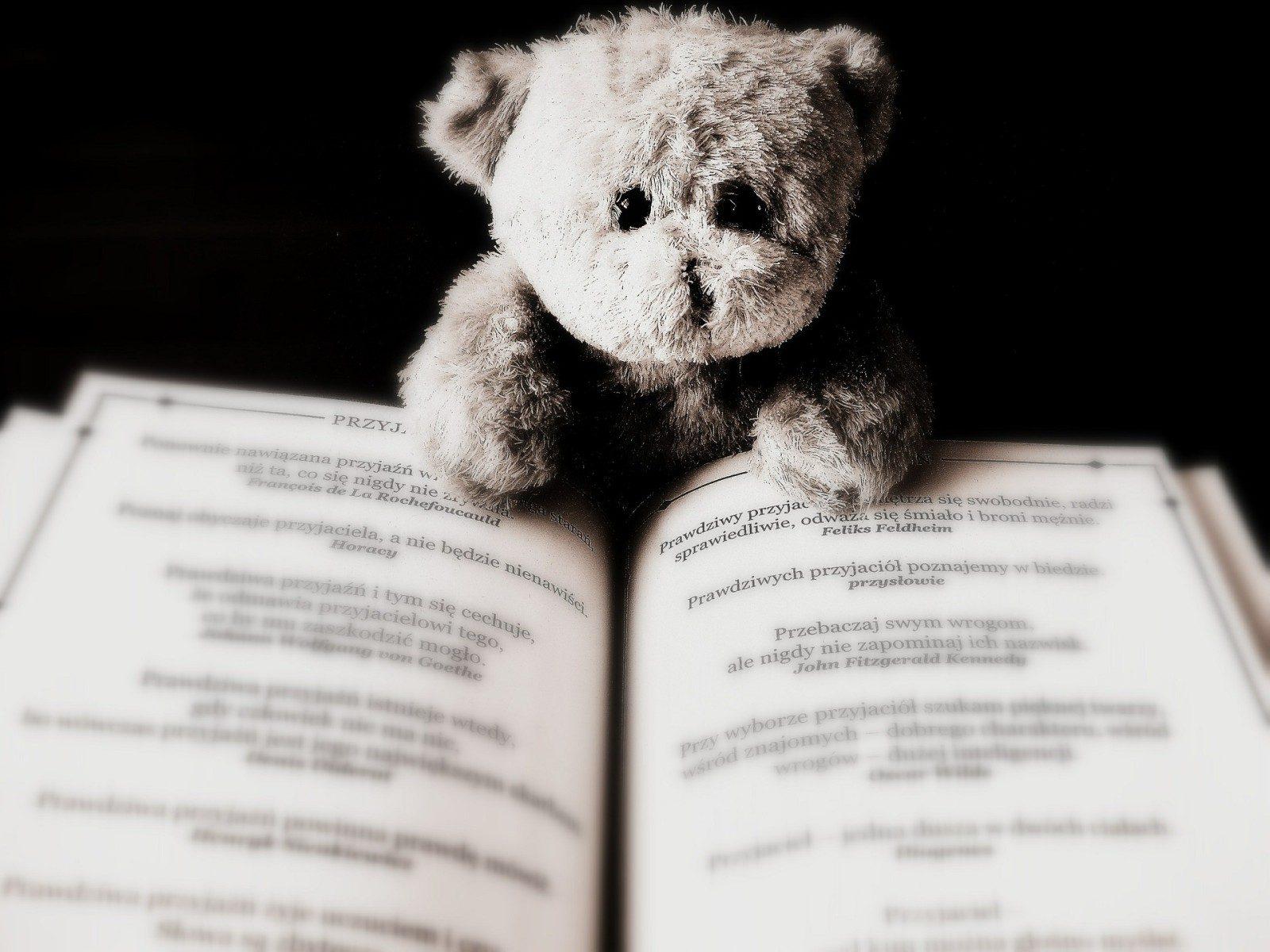 Salon du Livre Jeunesse à Montigny-lès-Metz : 2ème édition