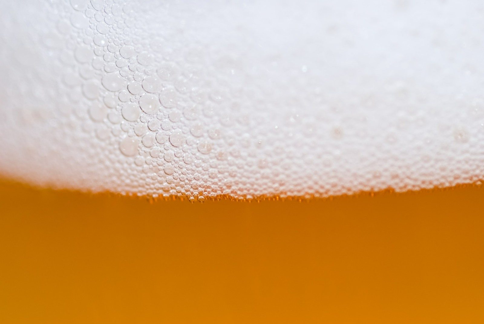 Richemont : le Salon Richement bière est de retour en 2016