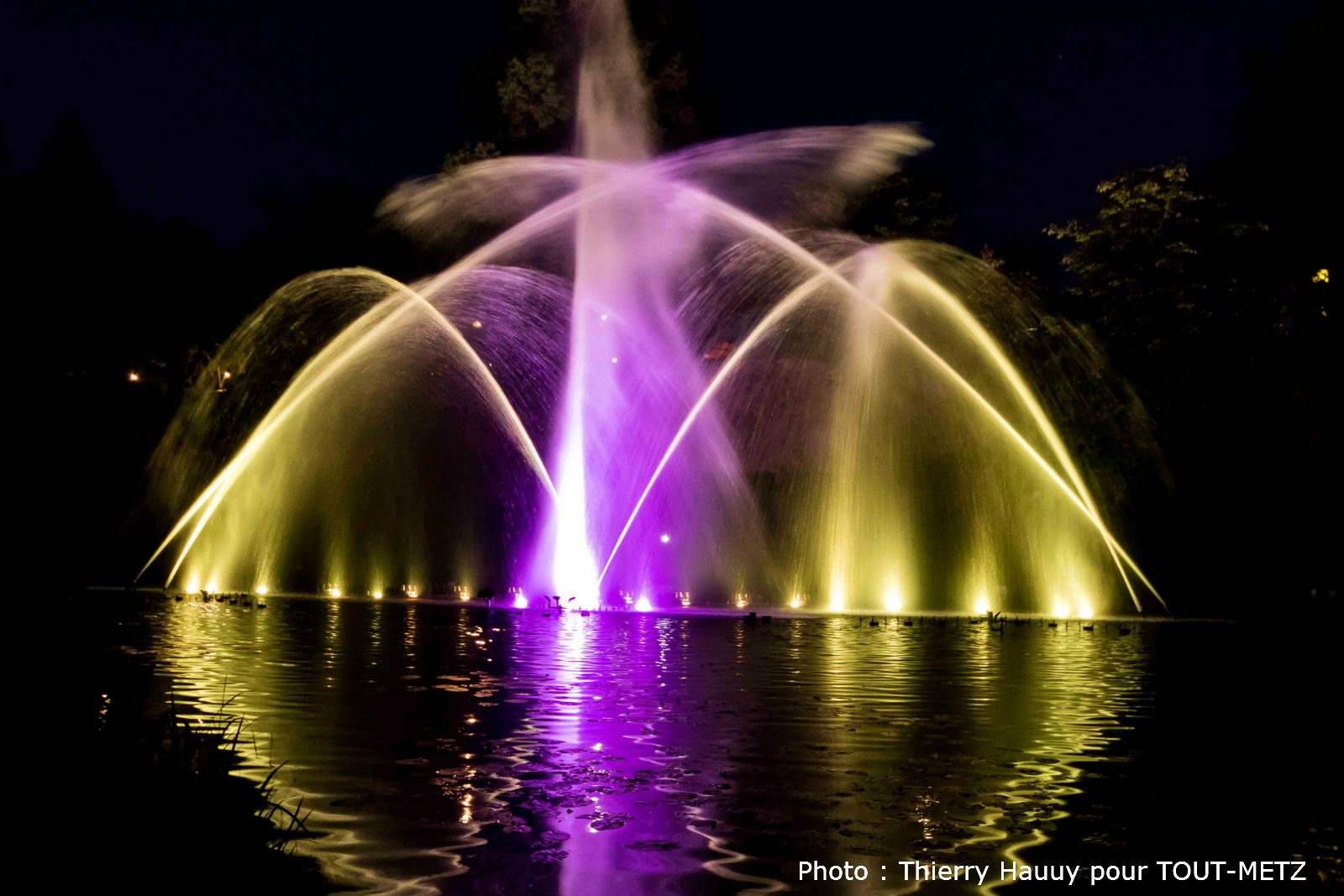 Animation d'été : les Fontaines Dansantes sur le thème de «Metz, ville fontaine»
