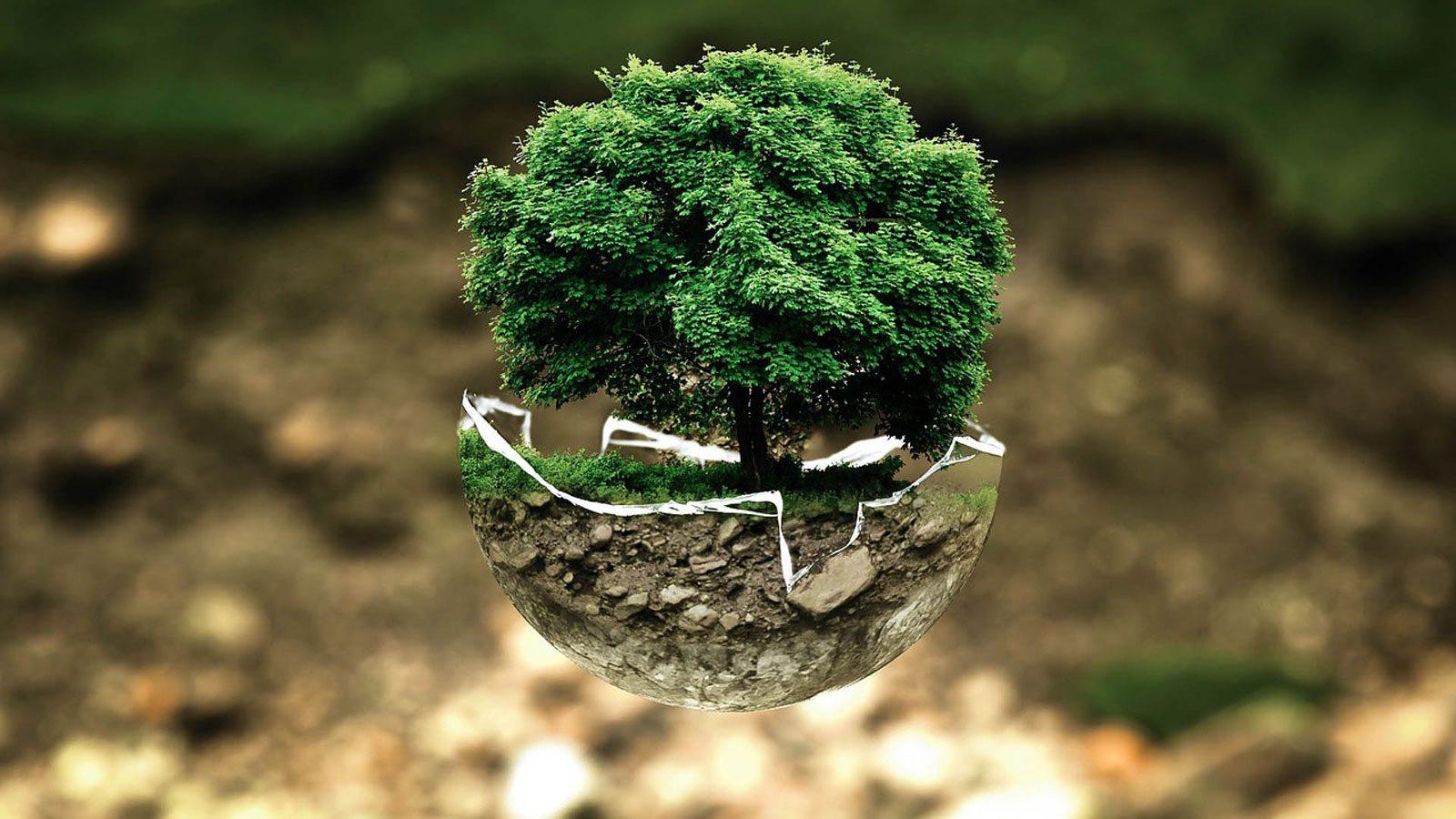 L'écologie et la nature à l'honneur à Woippy