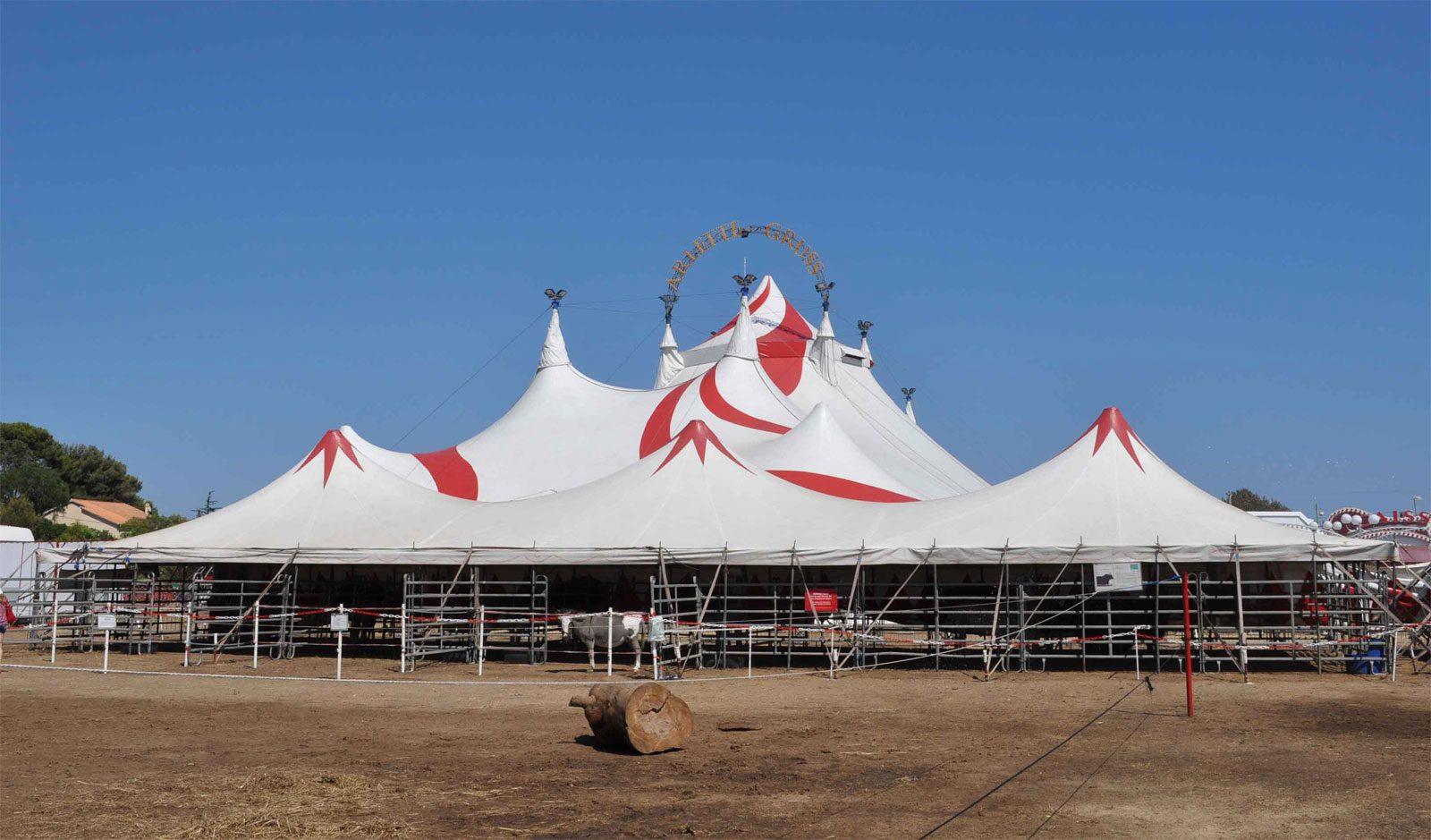 Le cirque Arlette Gruss fête ses 30 ans à Metz