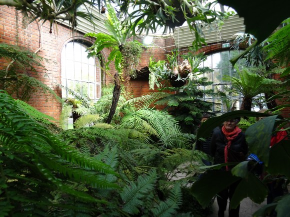 Visite guid e du jardin botanique de metz for Jardin botanique metz