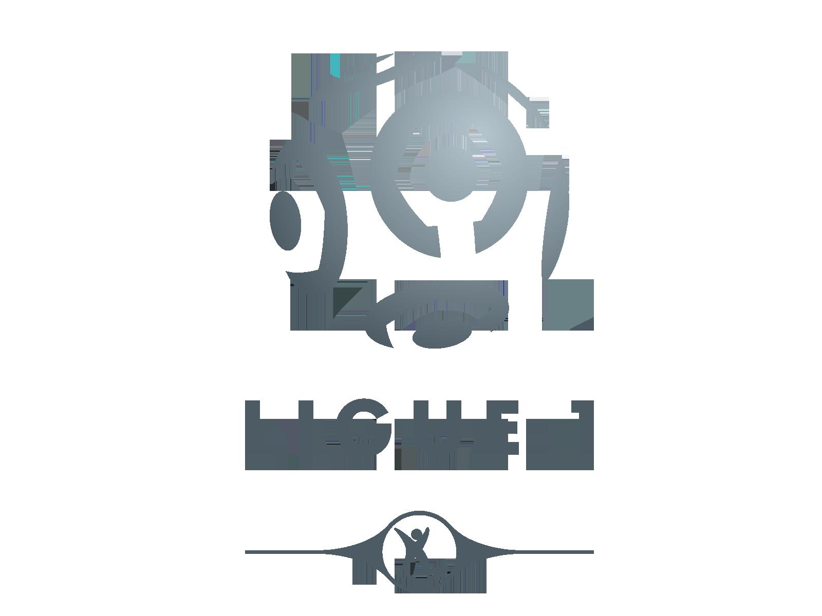 Le FC Metz perd à Lens, mais monte en Ligue 1