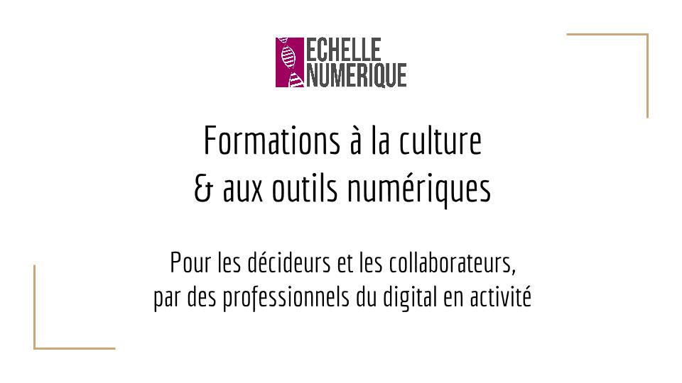 Photo de Formation au digital pour les professionnels : Echelle Numérique, nouvelle success story en vue à Metz ?