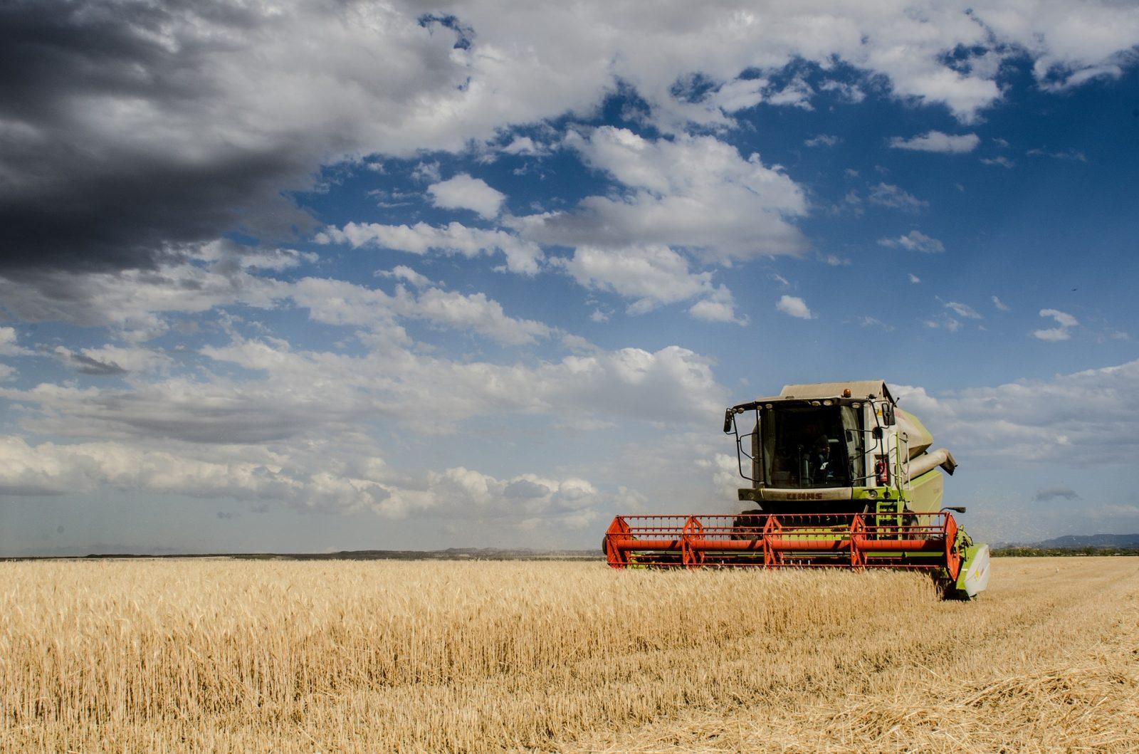 Pays'an Fête : moiss'batt' cross, vieux tracteurs et labours à Grostenquin