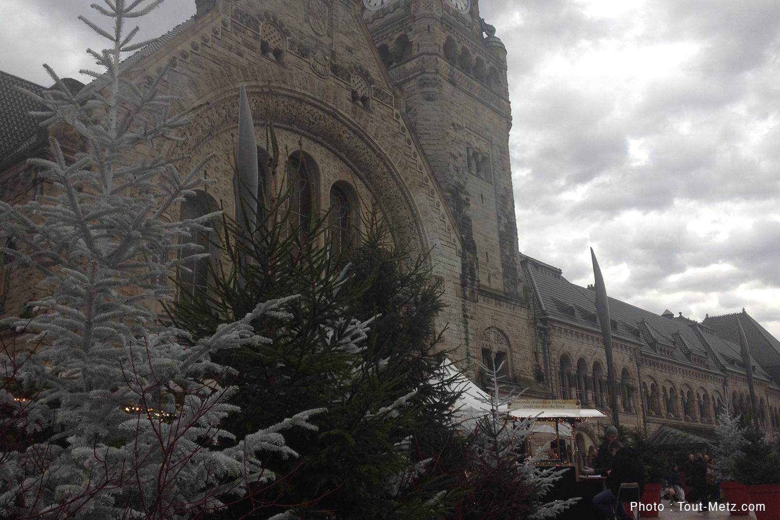 Une forêt de 100 sapins sur le parvis de la Gare à Metz