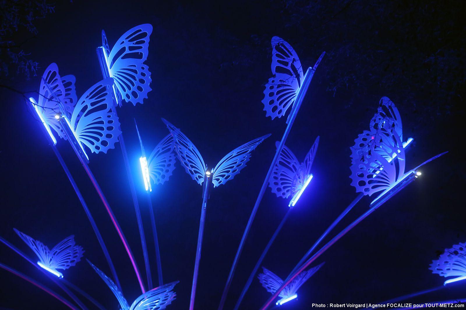 Photo of Amnéville Lumières : balade sonore et féerique inédite au milieu de 50 sculptures de lumière