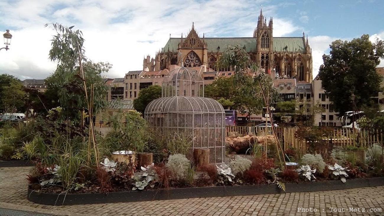Vente de plantes et arbres du jardin place de la com die metz 2017 for Jardin fabert metz