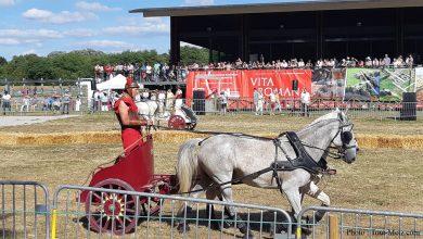 Photo of Vita Romana 2019 : Bliesbruck se met à l'heure romaine tout un week-end