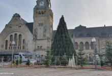Photo of Metz : où trouver son sapin de Noël ?