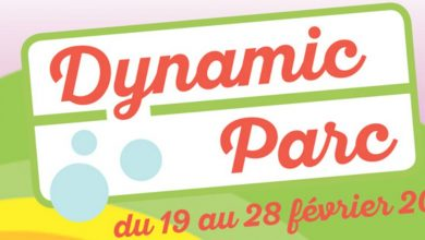 Photo of Dynamic Land à Metz : le parc d'attractions indoor XXL ouvre demain