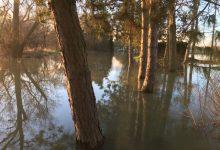 Photo of Inondations en Moselle : découvrez les photos de nos lecteurs