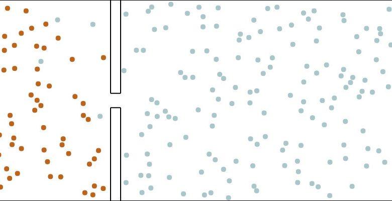 Photo of Efficacité du confinement sur le coronavirus : des schémas très évocateurs