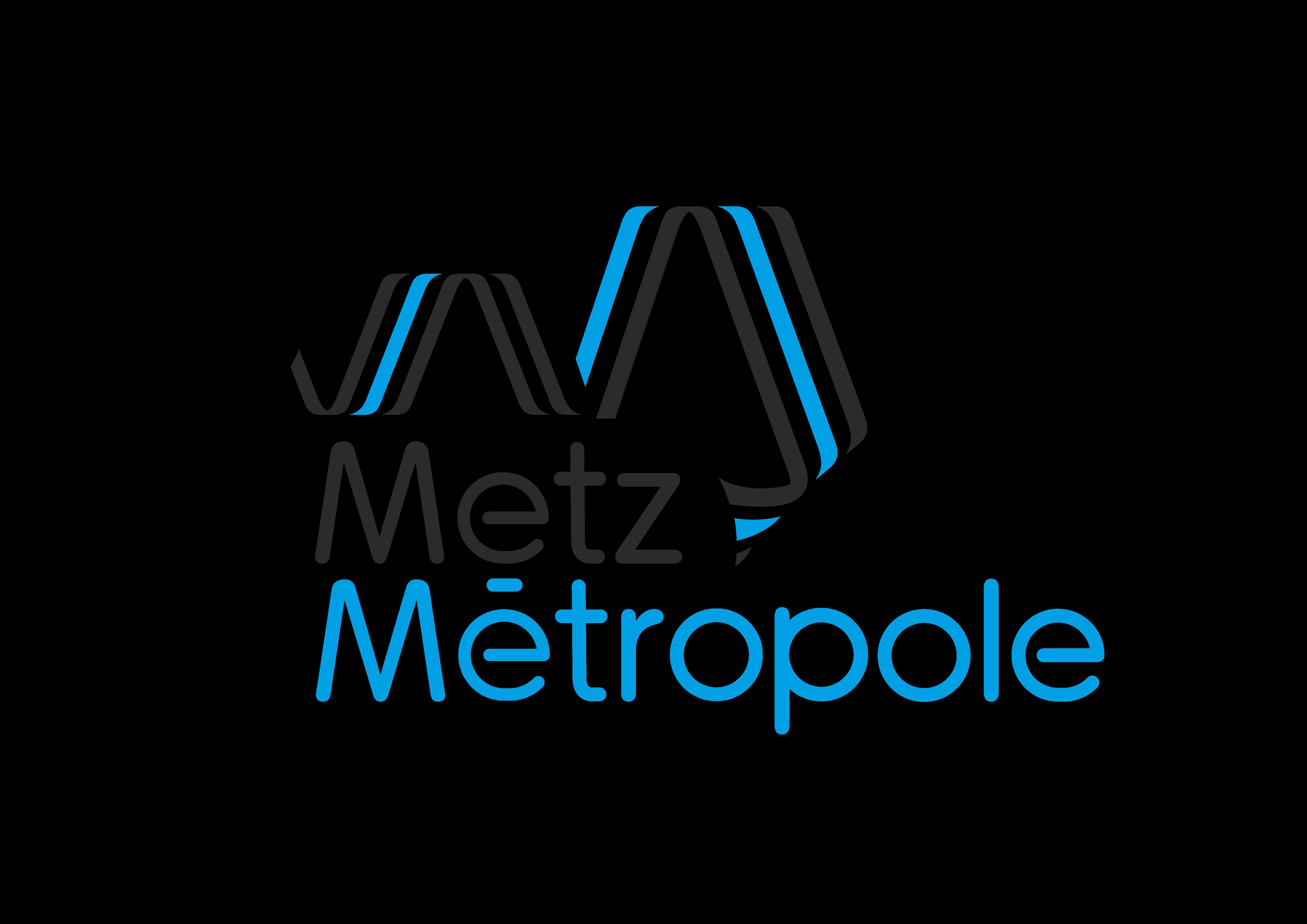 Photo de Elections du Président de Metz Métropole : en quoi cela vous concerne ?